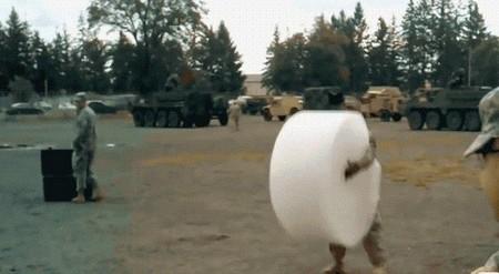 military funny 04 30 18 gifs 31a20 GIFs prove Military ain't Brain surgeons: Part 2 (20 GIFs)