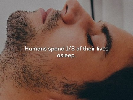 2478515 13 Mind blowing facts about the human lifetime (25 Photos)
