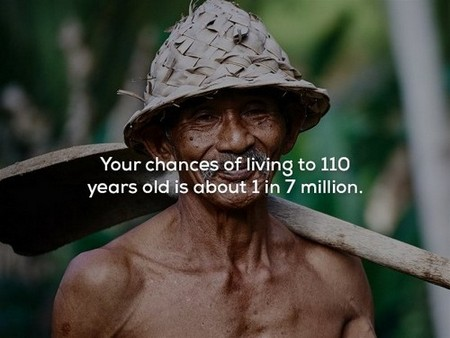 2478515 17 Mind blowing facts about the human lifetime (25 Photos)
