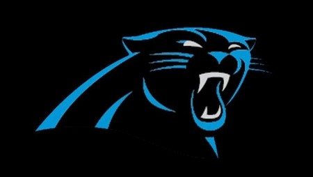 panthers13 4653816 ver1 0 1280 720 NFL logos ranked by attractiveness, all still beautiful on the inside (33 photos)