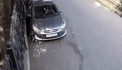 proof that people shouldnt be allowed anywhere near a motor vehicle 14 gifs 1410 Proof that some people shouldnt be allowed anywhere near a motor vehicle (14 GIFs)