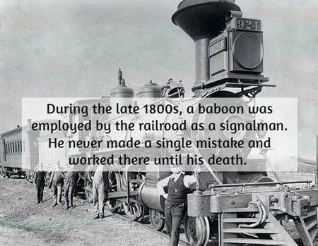 union pacific steam locomotive 924 An awesome historical fact dump (18 Photos)