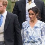 Help! I Want to Wallpaper My Whole House to Match Meghan Markle's Wrap Dress