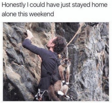 memes for people who would rather just stay in 28 photos 25 Memes for people who would rather just stay in (26 photos)