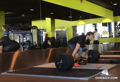 its fail day at the gym gifs 132 People who didnt skip Fail Day at the gym (16 GIFs)
