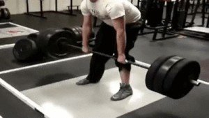 its fail day at the gym gifs 102 People who didnt skip Fail Day at the gym (16 GIFs)