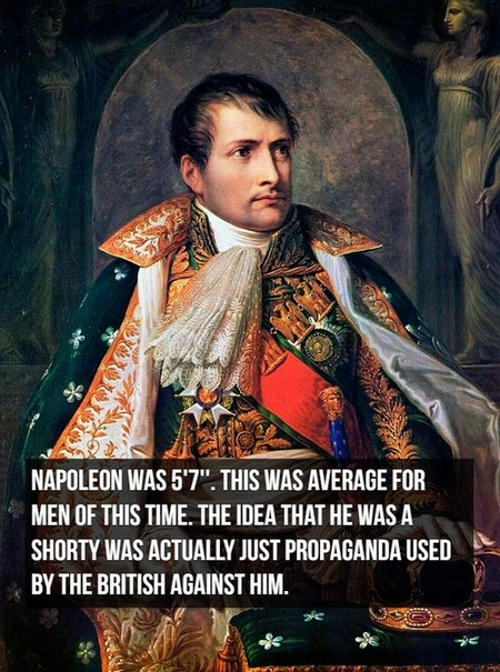 napoleon i of france by andrea appiani Things you might not know about Napoleon Bonaparte (20 Photos)