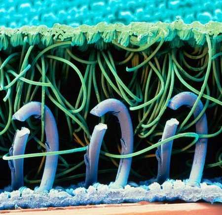 electron microscope 7 Mind blowing everyday objects under an electron microscope (18 Photos)