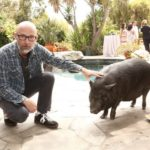 Moby Will Donate Proceeds of the Sale of His Home to Animal Rights