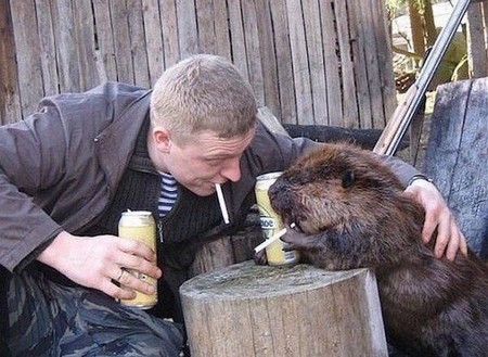 russia is number one exporter of insanity 24 photos 4 Russia is number one exporter of insanity! (24 Photos)