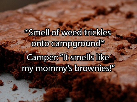 the craziest things people overheard at summer camp 20 photos 12 The craziest things people overheard at summer camp (20 Photos)
