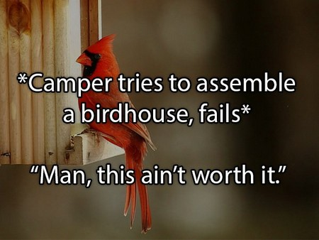 the craziest things people overheard at summer camp 20 photos 2 The craziest things people overheard at summer camp (20 Photos)