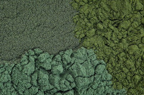 Buzzy Beauty Ingredient of the Moment: Chlorella