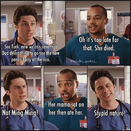 2576174 10 Dr. Cox! We need Scrubs quotes, STAT (35 Photos)