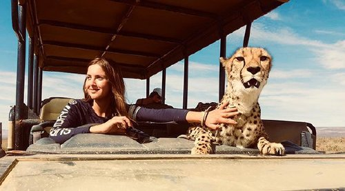 meet lisa the cute wildlife worker who raised a pack of cheetahs as her own 29 photos videos 8 Meet Lisa, the cute wildlife worker who raised a pack of cheetahs (30 Photos & Video)