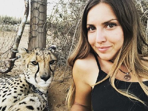 meet lisa the cute wildlife worker who raised a pack of cheetahs as her own 29 photos videos 13 Meet Lisa, the cute wildlife worker who raised a pack of cheetahs (30 Photos & Video)