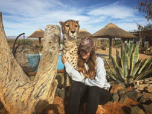 meet lisa the cute wildlife worker who raised a pack of cheetahs as her own 29 photos videos 25 Meet Lisa, the cute wildlife worker who raised a pack of cheetahs (30 Photos & Video)