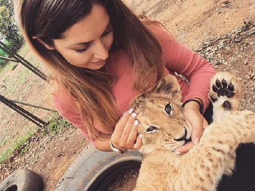 meet lisa the cute wildlife worker who raised a pack of cheetahs as her own 29 photos videos 3 Meet Lisa, the cute wildlife worker who raised a pack of cheetahs (30 Photos & Video)
