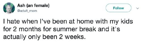 back to school tweets 10 Summer break has parents daydreaming of the school year (28 Photos)