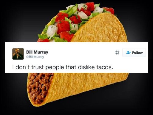 taco tweets 181 Tweets only a true taco lover can appreciate (23 photos)
