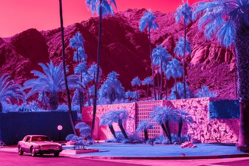 You'll Never Look at Iconic Palm Springs Architecture the Same Way Again