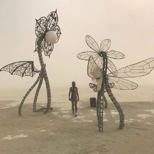bnkeuoffbxo png 700 Burningman is like going to another planet (45 Photos)