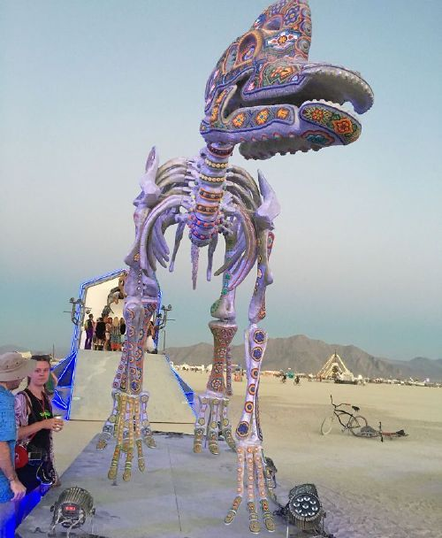 bnifrtsf ve png 700 Burningman is like going to another planet (45 Photos)