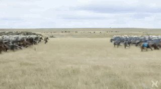 charge9 Mesmerizing CGI physics simulations we cant stop staring at (18 GIFs)