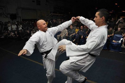 the most lethal martial arts ever created 10 The most lethal martial arts ever created (20 Photos)