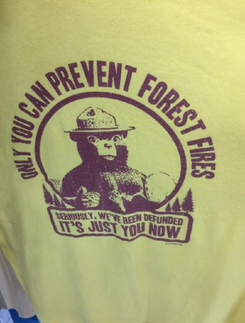thrift shop steals and squeals 2511 Thrift shop steals and squeals (38 photos)