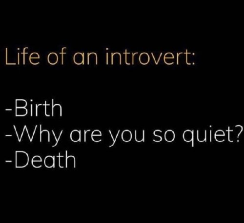 intro 14 Cancel all your plans for these introvert memes (30 Photos)