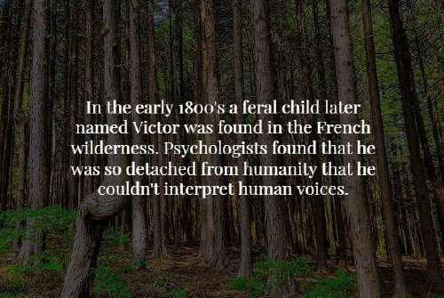creepy facts that will chill you to the bone 20 photos 18 Creepy facts that will chill you to the bone (20 Photos)