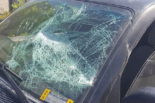 wrecked 4 runner from jiffy lube brake job smashed windshield If youre gonna die, might as well have an insanely bizarre death (21 Photos)