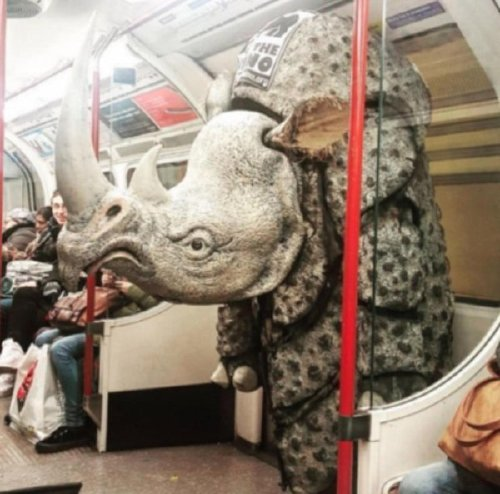 crazy people riding subway bizarre 25 Subways are not where normal happens (38 Photos)