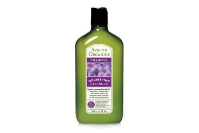 Lavender Shampoo, £7.95, Avalon