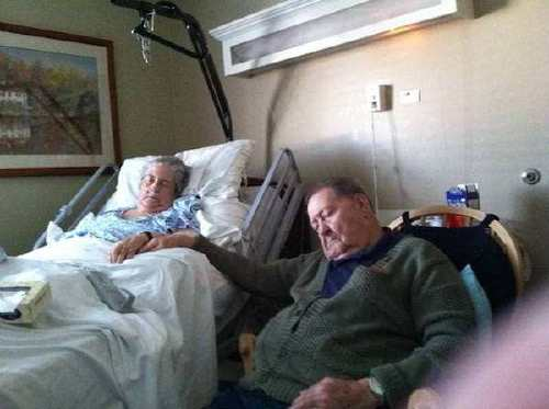photos that prove true love never dies xx photos 20 True love is real and everlasting (25 Photos)