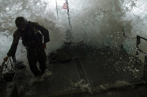 wallpaper pics seals will take your river 259 Wallpaper pics: SEALs will take your River (100 HQ Photos)