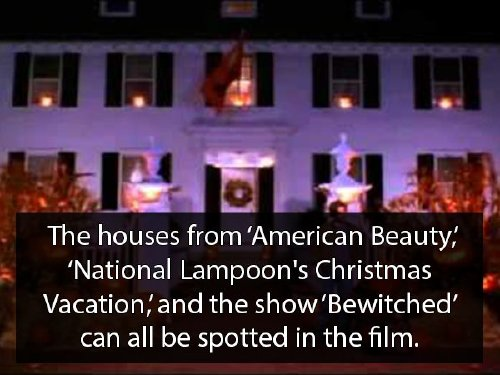 hocus pocus 9 Youre never too old for Hocus Pocus facts (18 Photos)