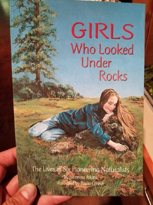 always judge a book by its cover photos 1 Always judge a book by its cover (27 Photos)