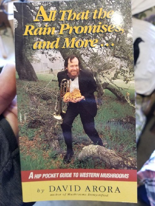 always judge a book by its cover photos 5 Always judge a book by its cover (27 Photos)