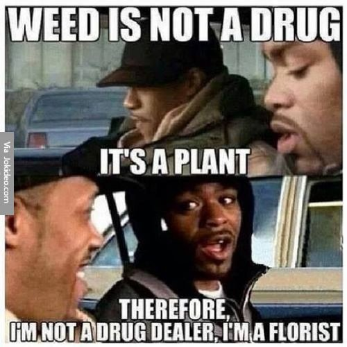 weed is not a drug meme dgnmpz Puff, puff and pass me the memes (27 Photos)