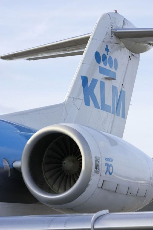 Womans pet dog dies during 11-hour Air France-KLM flight