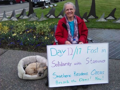 71-year-old Lanni Johnson protested outside the Washington state capitol building to raise awareness about starving orcas. (Credit: Lanni Johnson)