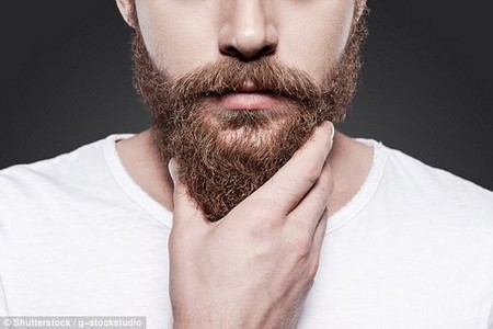 Researchers in the UK are investigating a way to kill bacteria and counter antibiotic resistance. Men's beards could harbour future antibiotics — a team have found that certain bacteria grown from beard samples could kill a form of drug-resistant E.coli