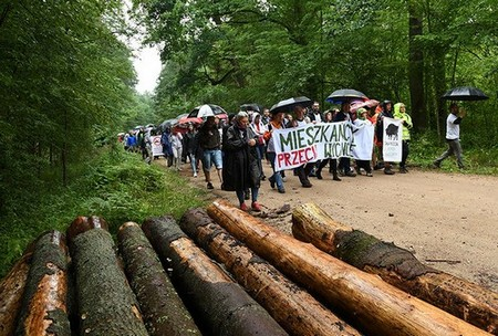 Image of a protest march against the cutting of trees in the Bialowieza Forest in Stara Bialowieza, Poland in August 2017.