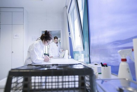 Young scientists take samples in a laboratory.