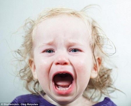 Scientists have revealed how parents can deal with toddlers' temper tantrums (stock)