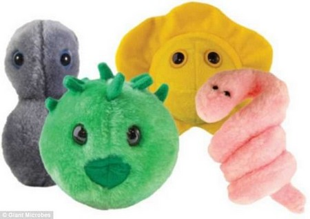 A toy company is selling stuffed animals based on sexually transmitted diseases such as gonorrhea, chlamydia, herpes and syphilis (left to right) for STD Awareness Month in April