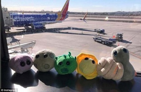 The toys are pictured at the airport in Phoenix, Arizona, after a medical conference