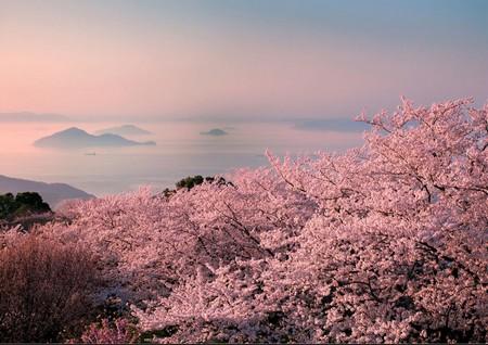 13 Reasons to Travel to Japan's Setouchi Region